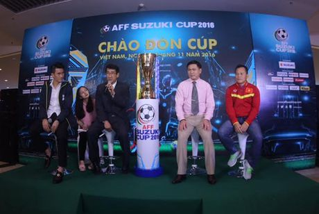 Mong cup vang AFF tro lai Viet Nam lan nua - Anh 2
