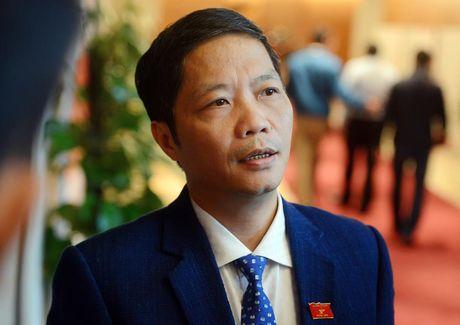 'Dung du an dien hat nhan Ninh Thuan la bat kha khang' - Anh 1