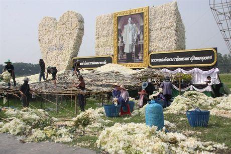 [Anh]: Go hoa lan tai cac tuong dai tuong niem nha vua Thai Lan - Anh 1