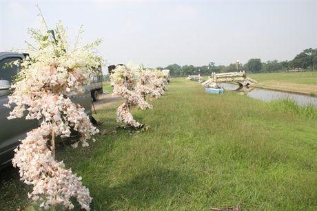 [Anh]: Go hoa lan tai cac tuong dai tuong niem nha vua Thai Lan - Anh 4