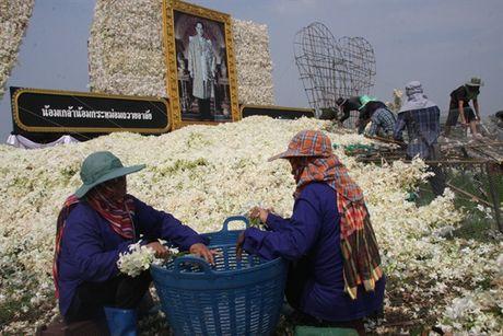 [Anh]: Go hoa lan tai cac tuong dai tuong niem nha vua Thai Lan - Anh 6