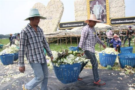 [Anh]: Go hoa lan tai cac tuong dai tuong niem nha vua Thai Lan - Anh 8