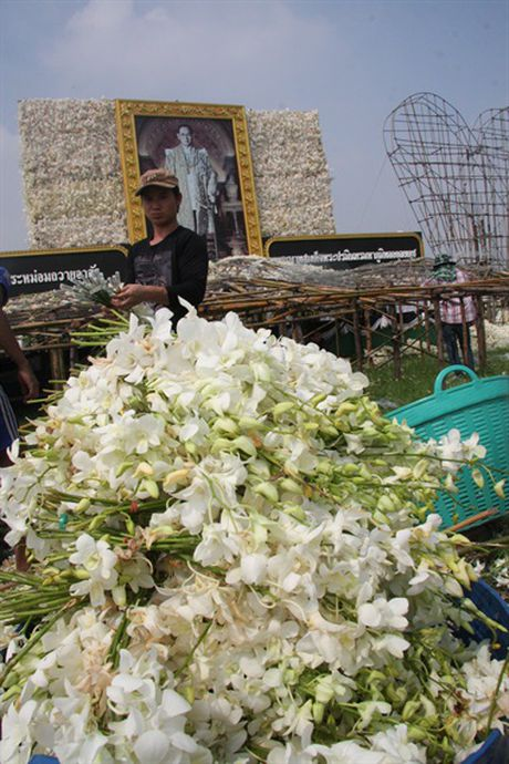 [Anh]: Go hoa lan tai cac tuong dai tuong niem nha vua Thai Lan - Anh 9