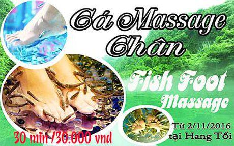 """Quang Binh: Dua vao khai thac dich vu """"Ca massege chan"""" tai diem du lich Song Chay – Hang Toi - Anh 1"""