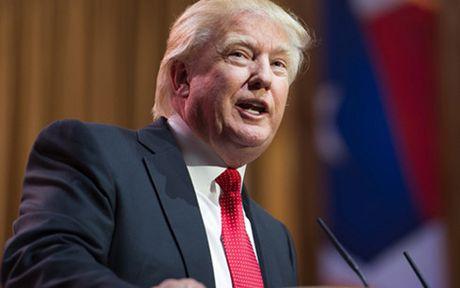 Ong Donald Trump da lap nghiep nhu the nao? - Anh 1