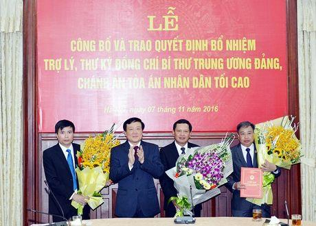 Bo nhiem nhan su mot so co quan Trung uong - Anh 2