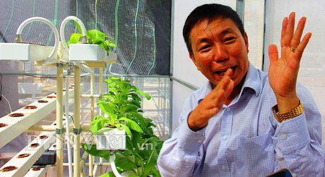 'Phu phep' vo dua phe thai thanh san pham doc dao thu tien trieu - Anh 9