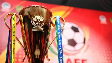 Cup vo dich AFF Cup 2016 den Viet Nam - Anh 2