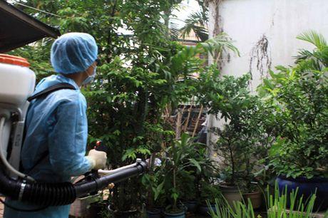 TIN NONG ngay 11/11: Da co 35 nguoi nhiem vi rut Zika o TP Ho Chi Minh - Anh 5