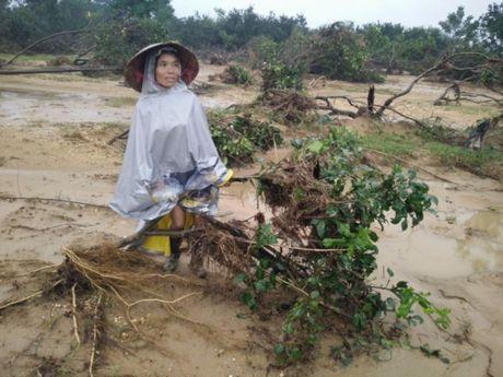 Tan hoang lang buoi dac san Phuc Trach - Anh 10