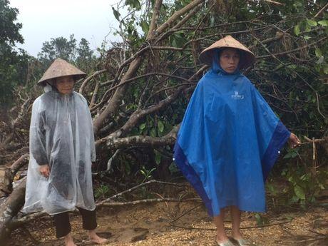 Tan hoang lang buoi dac san Phuc Trach - Anh 6