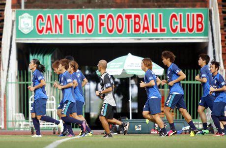 Cong Vinh, Cong Phuong, Tuan Anh duoc HLV doi Avispa Fukuoka danh gia cao - Anh 2