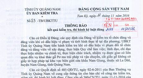 Quang Nam: Ky luat hang loat can bo, si quan vu pha rung po mu - Anh 2