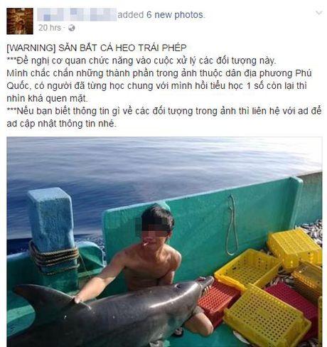 Nhom thanh nien sat hai ca heo o Phu Quoc co the bi xu phat 100 trieu dong - Anh 2