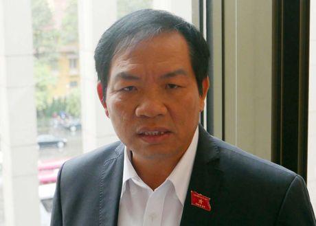 De nghi dung du an dien hat nhan Ninh Thuan la dung cam - Anh 1