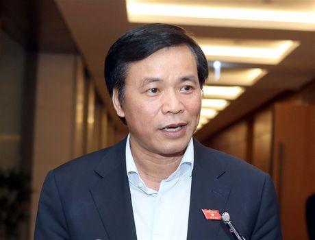 'Chua the khang dinh co ky luat ong Vu Huy Hoang tai ky hop nay' - Anh 1