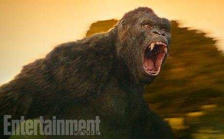 King Kong moi trong bom tan 'Kong: Skull Island' lo dien - Anh 1