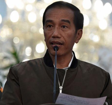 Dan Indonesia 'phat sot' vi chiec ao khoac cua tong thong - Anh 1