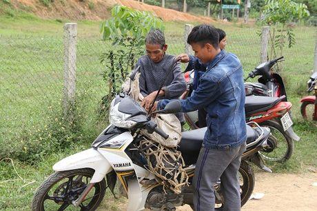 Tang lon giong cho ba con ban 'oc dao' giua long ho thuy dien - Anh 9