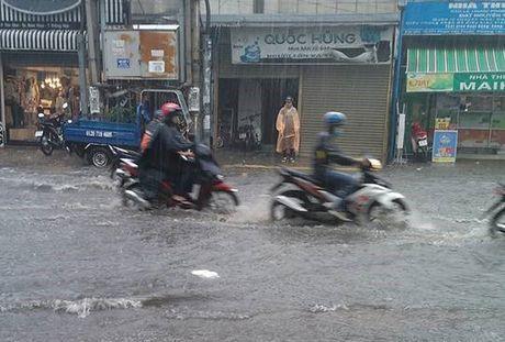 TP.HCM trien khai xay dung ban do trieu cuong - Anh 1