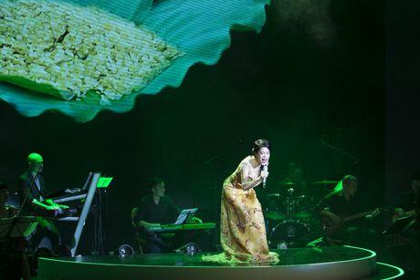 Thu Phuong muon lam 'con sao nho' cua Quang Linh - Anh 5
