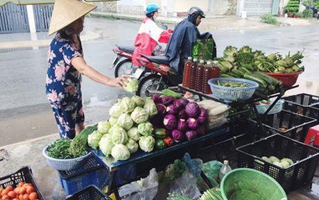 'Lam gia' rau xanh, nguoi dan Sai Gon dang bi... moc tui - Anh 1