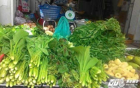 'Lam gia' rau xanh, nguoi dan Sai Gon dang bi... moc tui - Anh 2