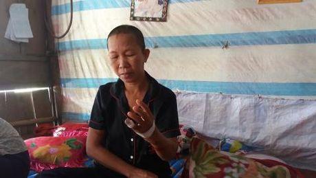 Re Trung Quoc chem me vo: Thua nhan bat ngo - Anh 1