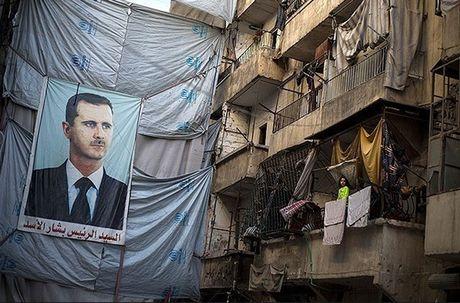 Chum anh thanh pho Aleppo giua chien su ac liet - Anh 3