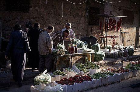 Chum anh thanh pho Aleppo giua chien su ac liet - Anh 5