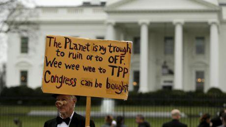 Chinh quyen My dinh hoan thong qua TPP, 'nhuong viec' cho ong Trump - Anh 1