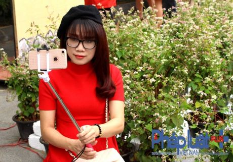 Ngo ngang truoc ve dep cua hoa tam giac mach khoe sac giua Ha Noi - Anh 6