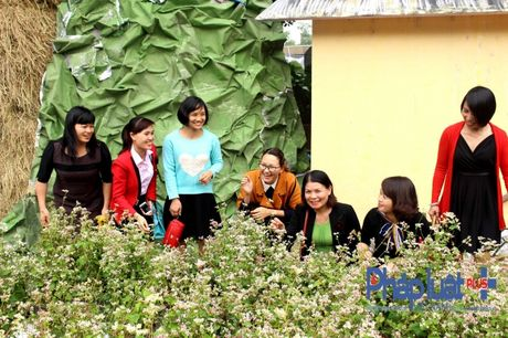Ngo ngang truoc ve dep cua hoa tam giac mach khoe sac giua Ha Noi - Anh 9