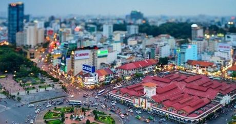 Ban tin Sai Gon Plus: Doc dao trong rau sach tren rac - Anh 1