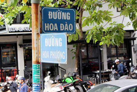 Chum anh: Nhung ten duong 'co van de' o TP.HCM - Anh 12