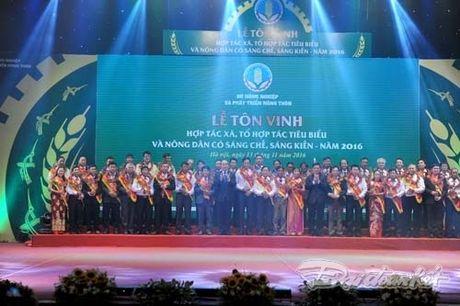 Ton vinh nhung dong gop cua HTX, nguoi nong dan - Anh 10