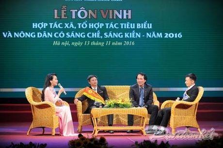 Ton vinh nhung dong gop cua HTX, nguoi nong dan - Anh 7