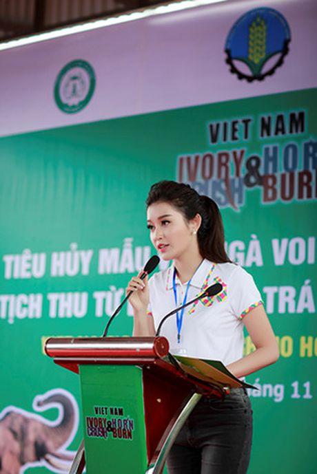 Huyen My chung tay ngan chan nan buon ban nga voi, sung te giac - Anh 3