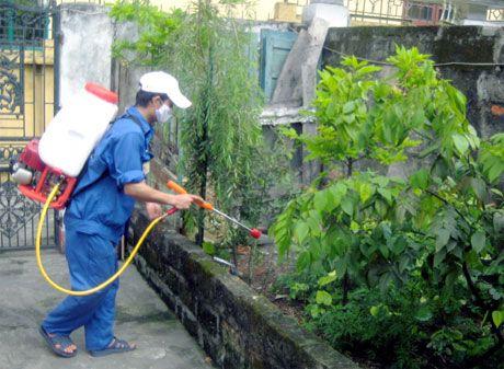 Phat hien truong hop dau tien nhiem virus Zika tai Ba Ria-Vung Tau - Anh 1