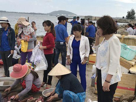 Quang Ngai: Can nhieu su giup suc hon de 'giai cuu' ca bop - Anh 2