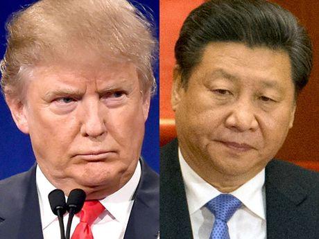 Donald Trump va Tap Can Binh ban gi trong cuoc dien dam dau tien? - Anh 1
