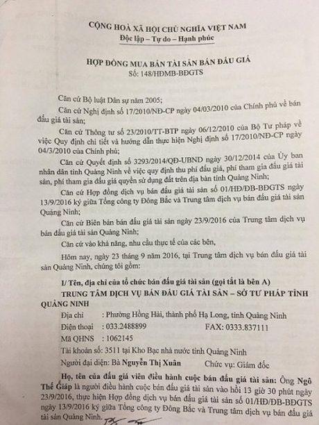 Nhieu nghi van trong dau gia tai san thanh ly tai Tong cong ty Dong Bac - Anh 1