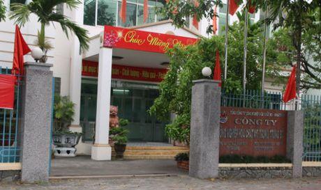 Cty cong nghiep hoa chat Trung Trung bo: Nhieu sai pham can duoc lam ro - Anh 1