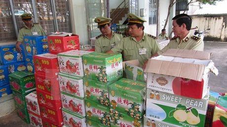 Quang Ninh: Thu giu gan 5 tan quyt nhap lau tu Trung Quoc - Anh 1