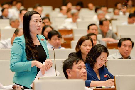 Phat bieu ve luat trach nhiem boi thuong cua Nha nuoc - Anh 1
