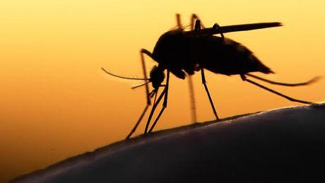 TPHCM: Thai phu mac Zika sinh con binh thuong - Anh 1