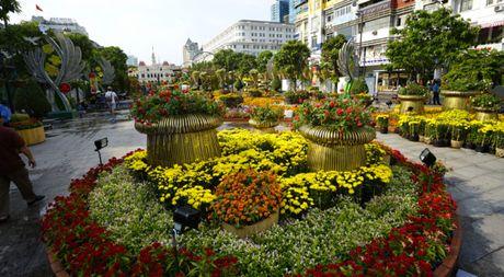 Nhieu loai hoa moi la tai duong hoa Nguyen Hue dip tet nam nay - Anh 1