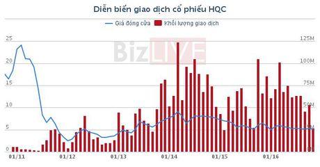 HQC: Dung phat hanh 74,65 trieu co phieu cho nha dau tu chien luoc - Anh 1