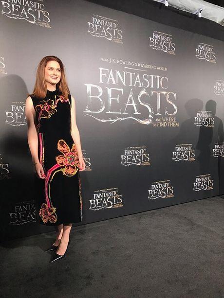 Dan 'phu thuy' cua Fantastic Beasts 'nhuom den' tham do tai New York - Anh 11