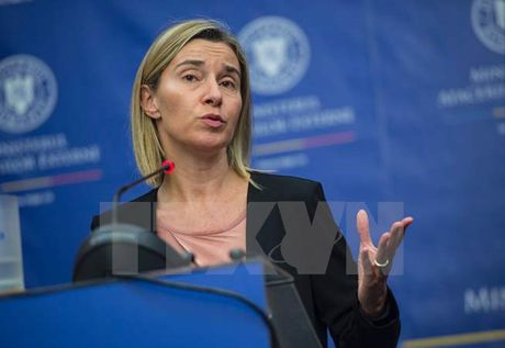 EU thong qua lo trinh tang cuong an ninh va quoc phong - Anh 1